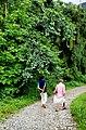 Walking through nature.jpg