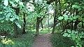 Wanderweg am Wambachoberlauf.JPG
