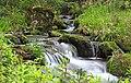 Wasserlauf des Bernrieder im Bayerischen Wald.jpg