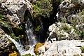 Waterfall in Kourtaliotiko Gorge on the island of Crete, Greece.jpg