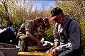Wild trout project e walker river bridgeport0083 (26209596011).jpg