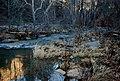 Winter Afternoon, Oak Creek Arizona, Manzanita Campground, 2013 - panoramio.jpg