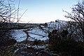 Winter morning (27555107339).jpg