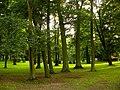 Wodników Górny park (Milicz).jpg