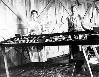 Bellingham, Washington - Workers with cut salmon on smoking trays at Whatcom Fish Products in Bellingham, 1916.  Photo by John Nathan Cobb.