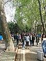 Wuhan University 20180406 091956.jpg