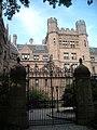 Yale University Campus-095.jpg