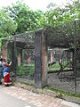 Zoo Kathmandu Nepal (5085882077).jpg