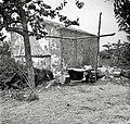 """""""Kotu"""" za prasce (prašiče) kuhat na prostem (samo poleti), Lopar 1950.jpg"""