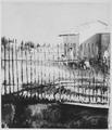 """Mabrouka Boardinghouse"", 1955 - NARA - 558820.tif"