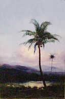 'Big Island Landscape' by D. Howard Hitchcock, 1902.JPG