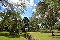 (1)Sutherland Park-2.jpg
