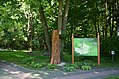 Ботанічний сад НУБіП 003.jpg