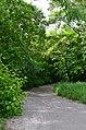 Восточная часть парка Нивки. Фото 4.jpg