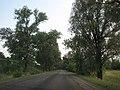 Дорога в Нежин - panoramio.jpg