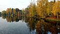Золотая осень на ВВЦ.jpg