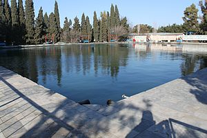 Mərdəkan - Image: Мардакянский дендрарий