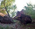 Место сбора - panoramio.jpg