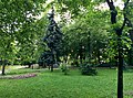 Міський сад 2.jpg