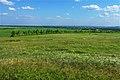 Начало лета в степи - panoramio.jpg