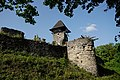 Невицький замок 31.jpg