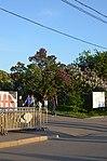Парк имени Горького в Москве. Фото 6.jpg