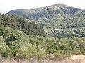 Поглед към Осогово от с.Гърляно - panoramio.jpg