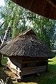 Саж із с. Мала Попівка Хорольського району Полтавської області DSC 0409.jpg
