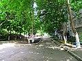 Солнечный. 4 июня 2013г. - panoramio (12).jpg