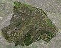 日野市の衛星写真001.jpg