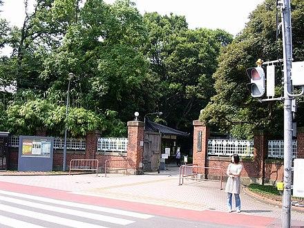 大学 東京 図書館 藝術 東京藝術大学附属図書館 —