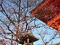 清水寺 Kiyomizu Temple - panoramio (2).jpg