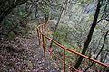 遊歩道 - panoramio.jpg