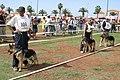 -EXPO BERGER 10 10 2004 055 (8056079257).jpg
