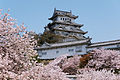 090411 Himeji Castle Hyogo pref Japan01s10.jpg