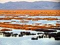 116 Reeds Lake Titicaca Peru 3266 (15179698001).jpg
