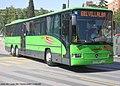 1501 Larrea - Flickr - antoniovera1.jpg