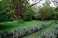 150510 182626 Giardino di Ninfa.jpg