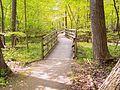2007-5-25- Rondeau Ontario - Provincial Park (47).JPG