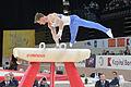 2015 European Artistic Gymnastics Championships - Pommel horse - Matvei Petrov 05.jpg