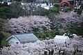20160403 Himeji-Castle 3357 (26826008615).jpg