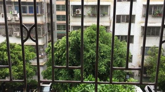 File:2018 super typhoon Mangkhut in Shenzhen 12.ogv