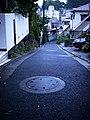 3 Chome Kitasenzoku, Ōta-ku, Tōkyō-to 145-0062, Japan - panoramio (3).jpg