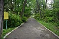 46-101-5017 Lviv Botanical Gargen L RB 18.jpg