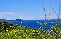 Açores 2010-07-18 (5039720588).jpg