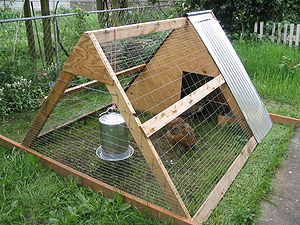 English: An A-frame chicken coop in a Portland...