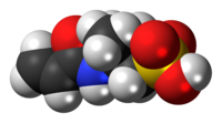 Space-filling model of the AMPS molecule