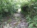 A Muddy Horror - geograph.org.uk - 1413059.jpg