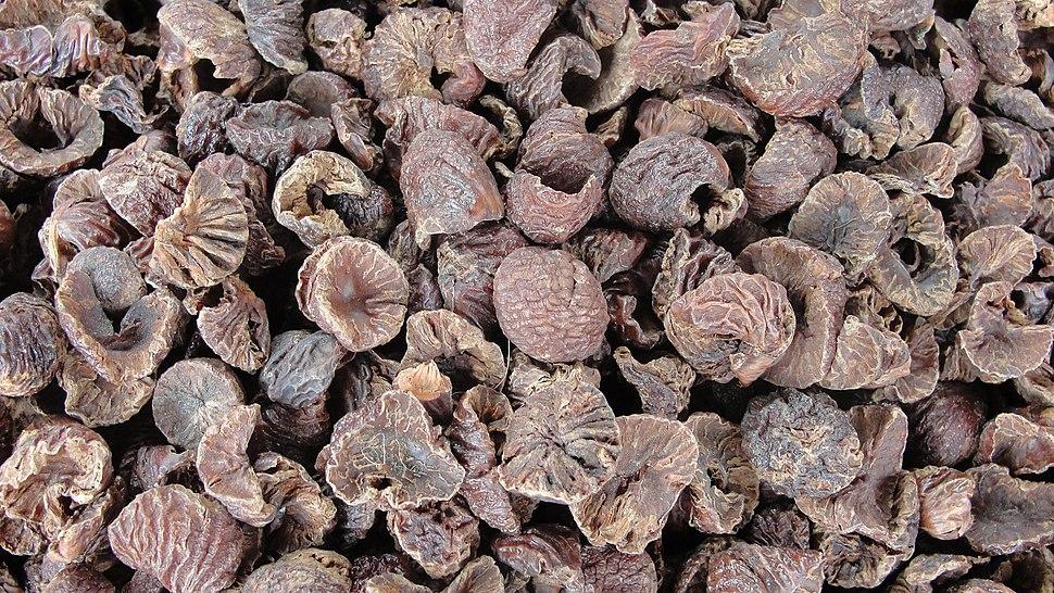 A close up of Areca nut