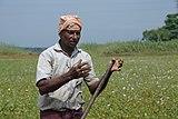 A farmer in Kerala 04.jpg